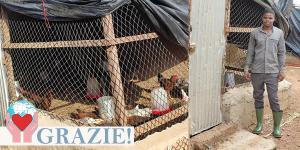 Sacerdote nutre i polli nell'allevamento